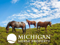 horse properties for sale MI